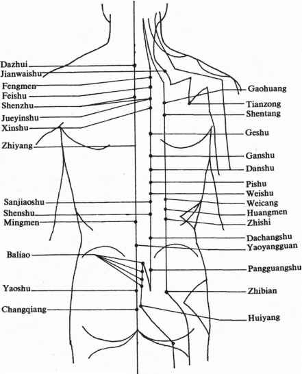 The Stomach Channel Foot Yangming