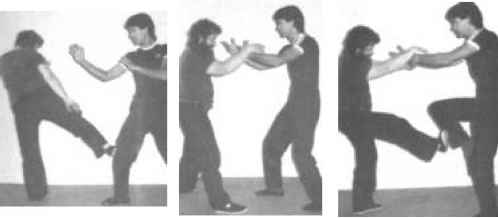 Tai Chi Fighting