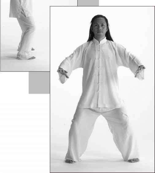 Golden Turtle Plunges into the Ocean - Tiger Qigong