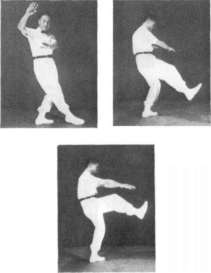 Images Tai Chi Hit Tiger