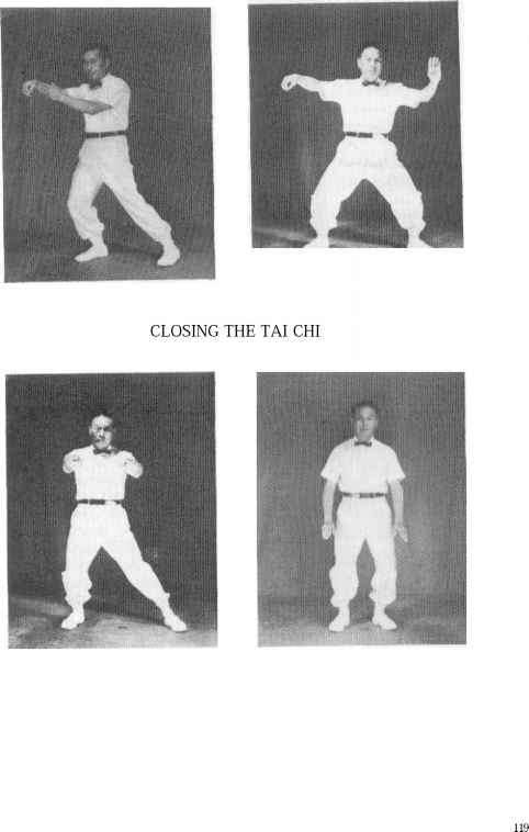 Tai Chi Ankle